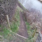 Canal towpath renovations (21)