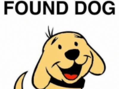 dogfoundsmall1
