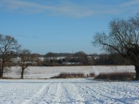 Minshull winter Jan 2013 (3)