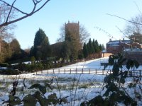 Minshull winter Jan 2013